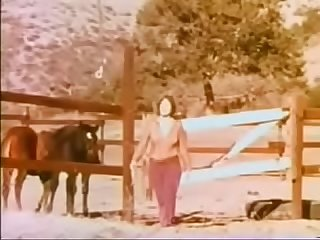 Full vintage movie love farm 1971 comma 58min comma 250mb