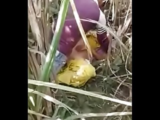Desi couple sex in jungle